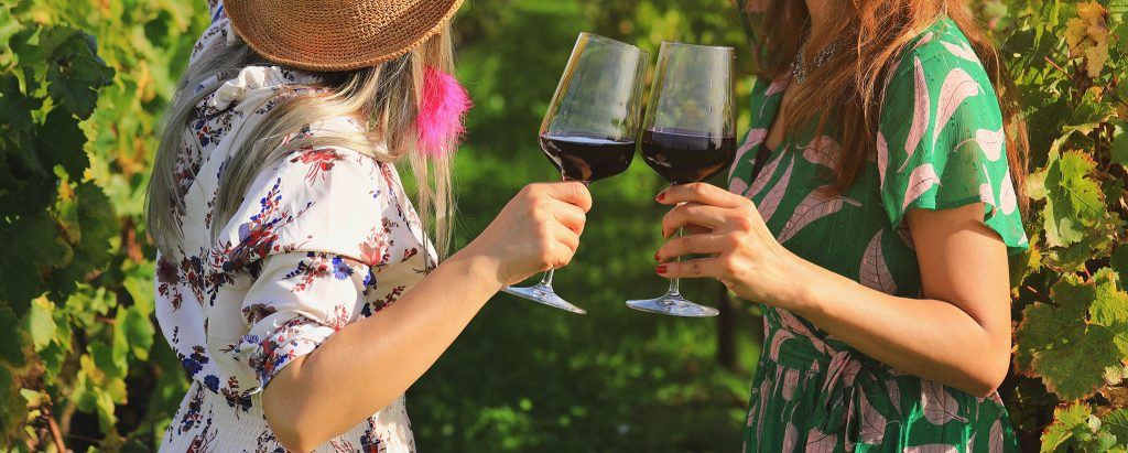 Close up on women hands holding red wine glasses at vineyard
